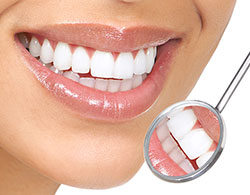 What Is A Periodontist Periodontist